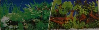 fotoachtergrond planten 1 / planten 5- blister